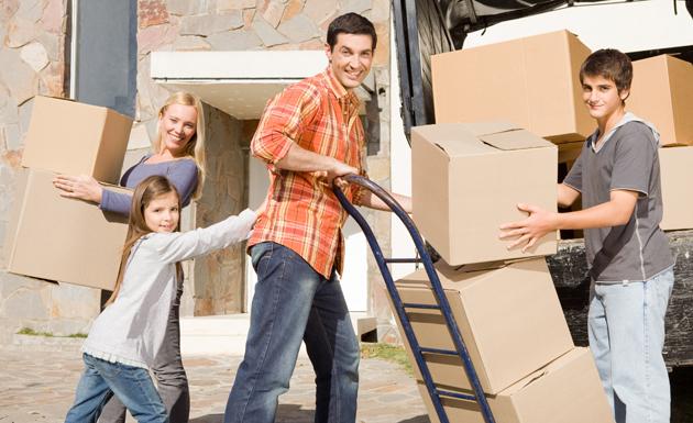 ארז דורי הולבות ומעבר דירה